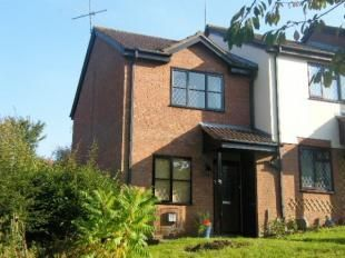 Thumbnail Property to rent in Catmint Close, Swindon