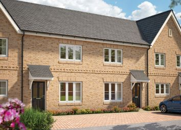 "Thumbnail 2 bed terraced house for sale in ""The Holly"" at Field End, Witchford, Ely"