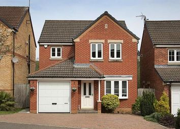 Thumbnail 3 bed detached house for sale in James Walton Place, Halfway, Sheffield, South Yorkshire
