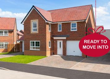 """Thumbnail 4 bed detached house for sale in """"Halton"""" at Morgan Drive, Whitworth, Spennymoor"""