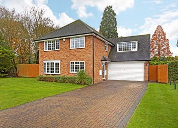 Thumbnail 4 bedroom detached house to rent in Cadogan Close, Holyport, Maidenhead