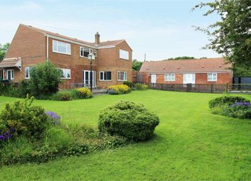 Thumbnail 4 bed detached house for sale in North Lane, Welwick, Hull, East Riding Of Yorkshire
