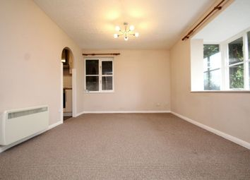 Thumbnail Studio to rent in Orchard Grove, Anerley