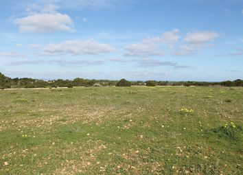 Thumbnail Land for sale in Balearic Islands, 07260, Balearic Islands, Spain