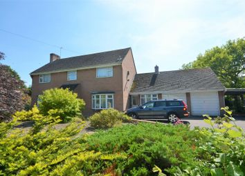 Thumbnail 3 bed detached house for sale in Lurmer Street, Fontmell Magna, Shaftesbury