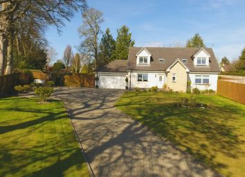 Thumbnail 4 bed detached house for sale in Bearehill Brae, Brechin