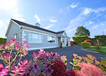 Thumbnail 3 bed detached house for sale in Ballinla, Freemount, Cork