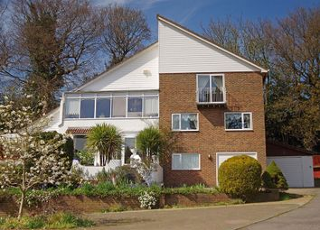 Thumbnail 5 bed detached house for sale in Hillside Road, Hastings