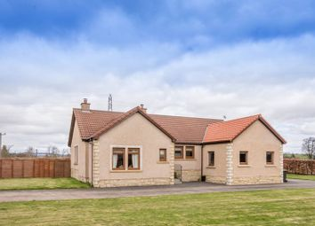 Thumbnail 2 bed detached bungalow for sale in Kinross