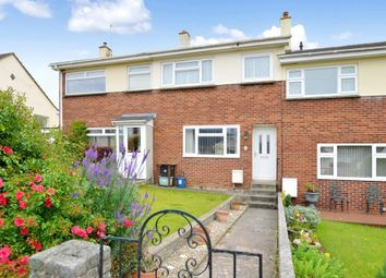 3 bed terraced house for sale in St. Michaels Road, Decoy, Newton Abbot, Devon TQ12