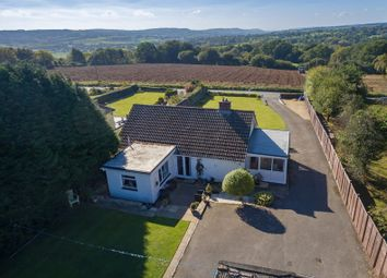 Thumbnail 3 bed detached house for sale in Tytherleigh, Axminster