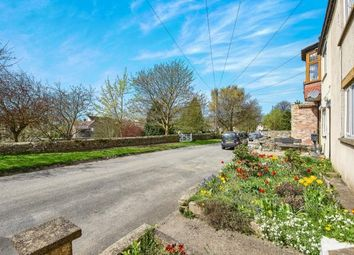 Thumbnail 1 bed terraced house for sale in Church Row, Melsonby, Richmond, North Yorkshire