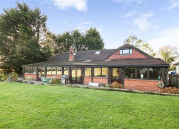 Thumbnail 4 bed detached house for sale in Stock Road, Stock, Ingatestone, Essex
