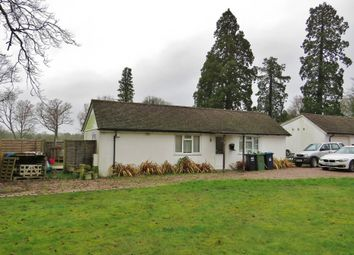 Thumbnail 2 bed detached bungalow to rent in Burstow, Surrey