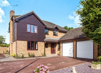 Thumbnail 4 bed detached house for sale in Briery Fields, Witchford, Ely