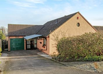 Thumbnail 3 bed detached bungalow for sale in Millbrook Dale, Axminster, Devon