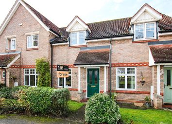 Thumbnail 2 bed terraced house for sale in Heasman Close, Newmarket