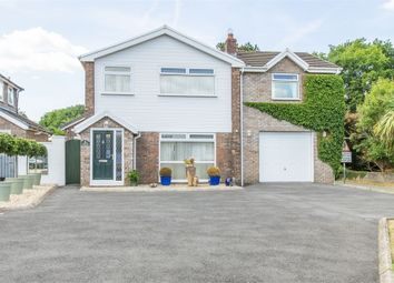 Thumbnail 5 bed detached house for sale in Fforest Fach, Tycroes, Ammanford, Carmarthenshire
