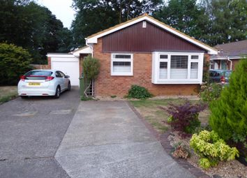 Thumbnail 3 bed detached bungalow to rent in Martindale Road, St. Johns, Woking
