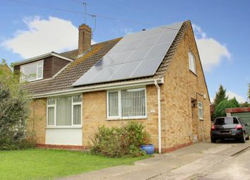 Thumbnail 2 bed semi-detached house to rent in Chestnut Avenue, Beverley