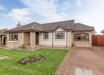Thumbnail 3 bed detached bungalow for sale in Eskfield Grove, Eskbank, Dalkeith