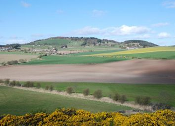 Thumbnail Farm for sale in Southfield Farm, St Michaels, Balmullo, St Andrews