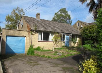 Thumbnail 2 bed detached bungalow for sale in Hurst, Beaminster, Dorset
