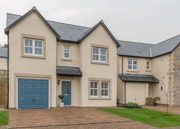 Thumbnail 4 bed detached house for sale in Wintergreen Lane, Kendal
