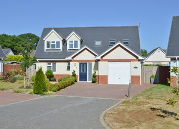 Thumbnail 4 bed detached house for sale in Winford Way, Winford, Sandown