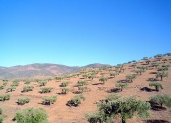 Thumbnail Land for sale in Douro, Guarda, Central Portugal
