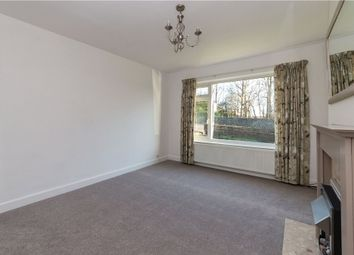 Primrose Lane, Bingley BD16