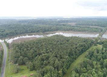 Thumbnail Land for sale in Adams Run, South Carolina, 174, United States Of America