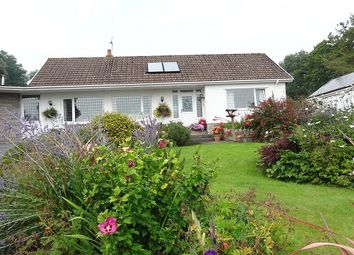 Thumbnail 3 bed detached bungalow for sale in Oxwich, Swansea