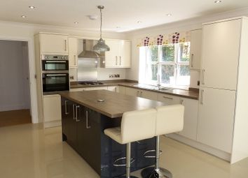 Thumbnail 4 bed detached house for sale in Maes Y Glyn, Johnstown, Carmarthen.