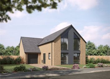 Thumbnail 4 bed detached house for sale in Palmers Meadow, Bridport, Dorset