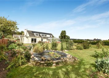 Thumbnail 4 bed detached house for sale in Meadowbank, Kilmington, Axminster, Devon