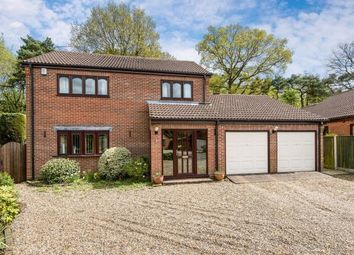 Thumbnail 3 bed detached house for sale in Drayton, Norwich, Norfolk