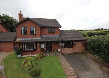Thumbnail 4 bed detached house for sale in Meadow View, Llanfihangel Talyllyn, Brecon