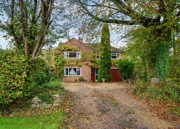 Thumbnail 5 bed detached house to rent in Rowly Drive, Cranleigh