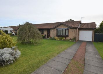 Thumbnail 2 bed semi-detached bungalow for sale in Gloster Park, Amble, Morpeth