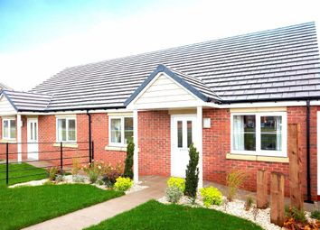 Thumbnail 2 bed semi-detached bungalow for sale in Acacia Drive, Sowerby, Thirsk