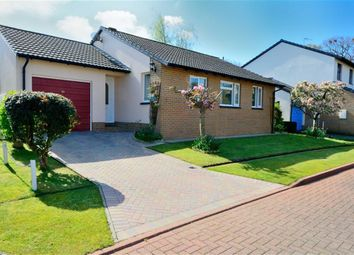 Thumbnail 3 bedroom detached bungalow for sale in Lagoon View, West Yelland, Barnstaple