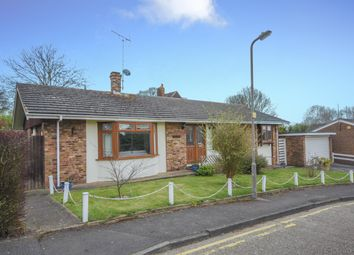 Thumbnail 3 bed detached bungalow to rent in Lewis Close, Shenfield, Brentwood