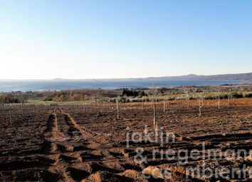 Thumbnail 3 bed country house for sale in Italy, Lazio, Viterbo, Bolsena.