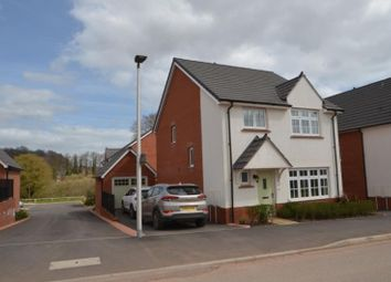 Thumbnail 4 bed detached house to rent in Swift Road, Dawlish