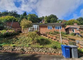 Thumbnail 3 bed bungalow to rent in Cherry Tree Avenue, Haslemere