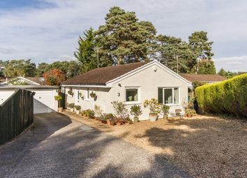 Thumbnail 2 bed detached bungalow for sale in St Ives, Ringwood, Hampshire