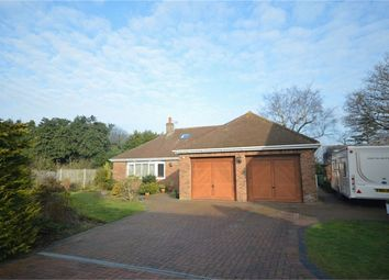 Thumbnail 4 bed detached bungalow for sale in Snowberry Close, Taverham, Norwich
