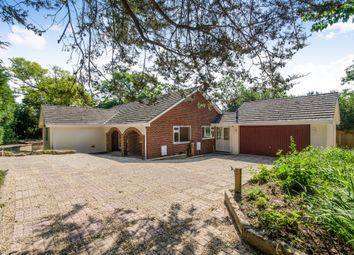 Thumbnail 4 bed detached bungalow for sale in Corfe Road, Stoborough, Wareham
