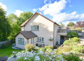 Thumbnail 4 bedroom detached house for sale in Okehampton, Devon